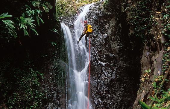Martinique Bras Gsegner.jpg
