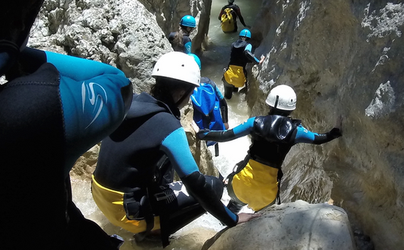 formiga canyon.png
