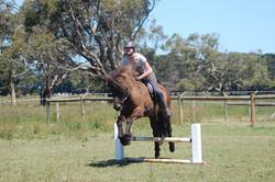 Falinn learning to jump