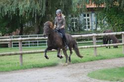 Ari at Lindenhof