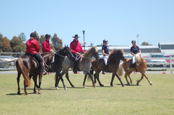 Equitana 2016, drill team with Canalbyn Rocky Mountains, Haldane Icelandic Horses and Falinn and I