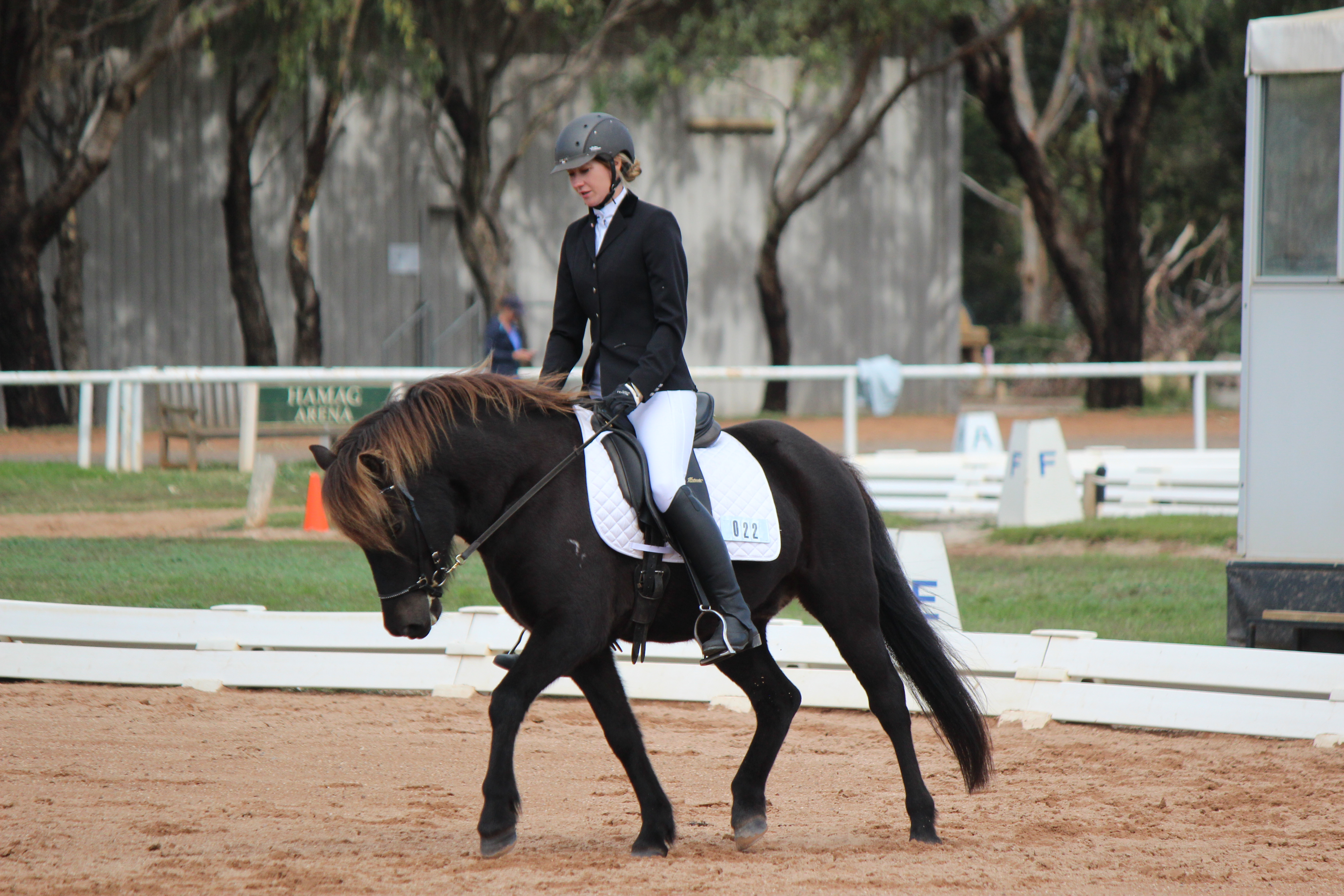 Werribee Open Pony Dressage