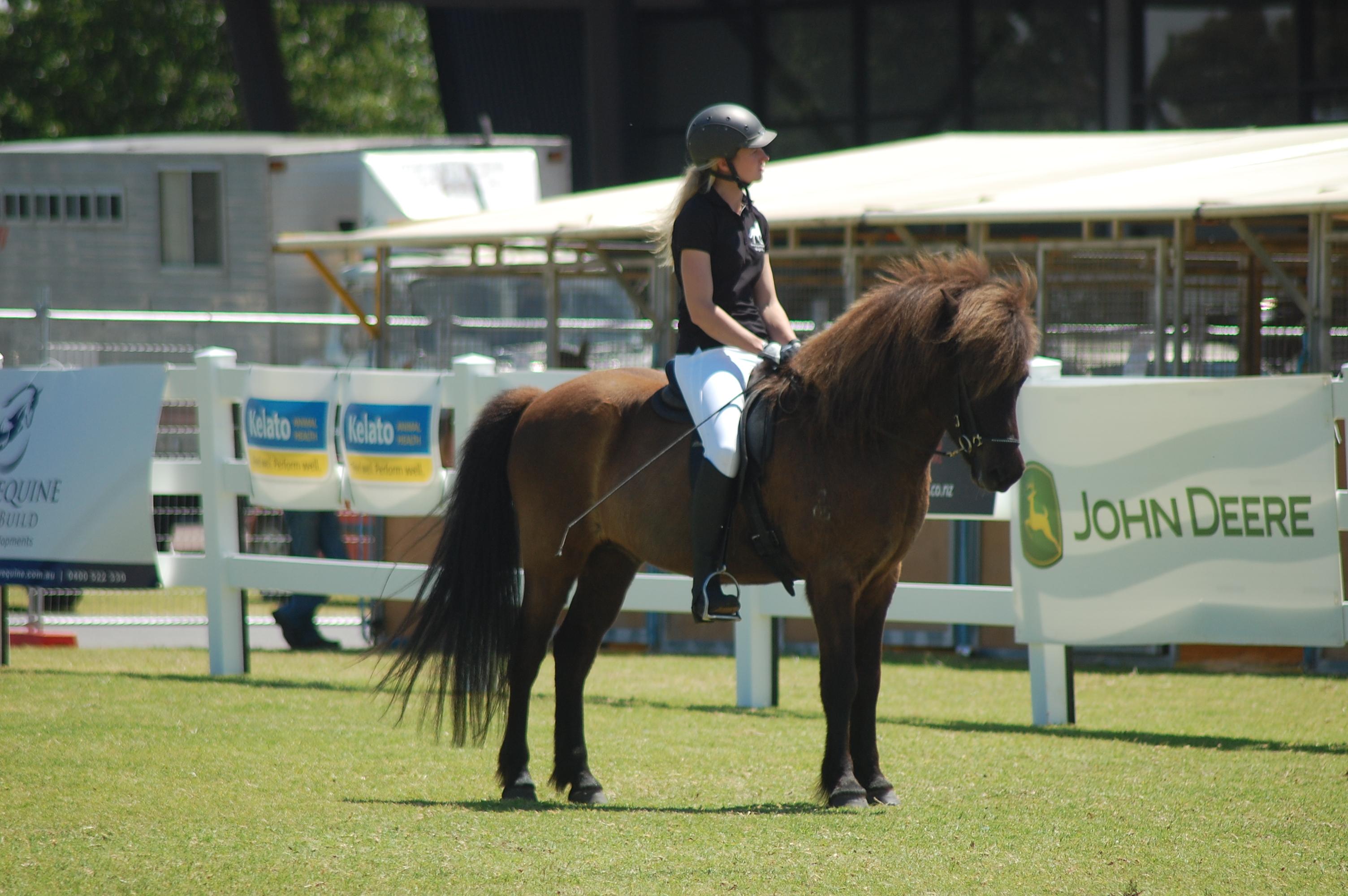 Equitana 2016, Falinn