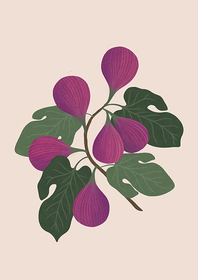 Figs - A3