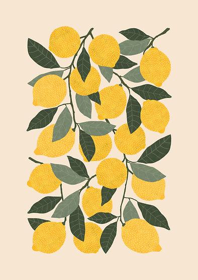 Lemons - A3