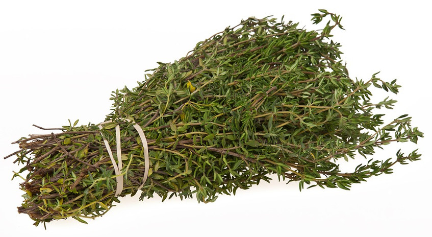 thyme tea helps allergies