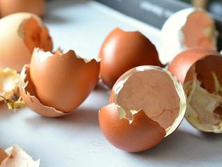 Eggshells and Calcium