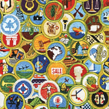 merit_badges.jpg