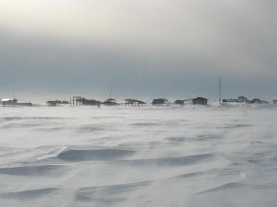 URGENT DISPATCH from Nome, Alaska