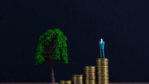 ESG, capitalismo de stakeholder e o impacto nas redes