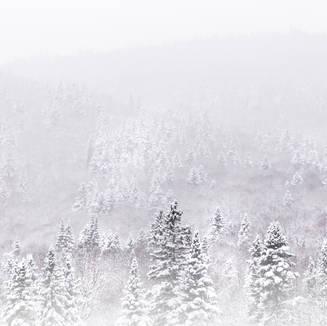 Blanche montagne