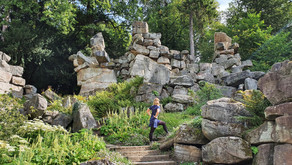 The wonders of Paxton's rockery