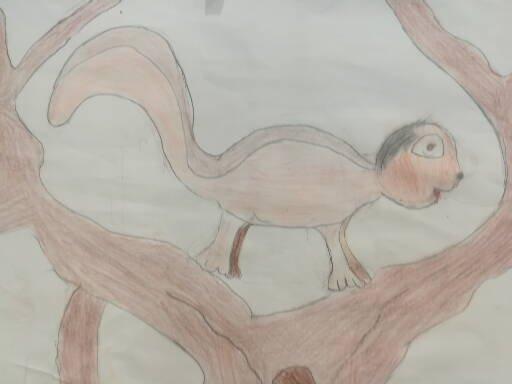 1 L'encureuil