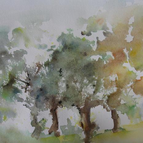 Les arbres dansent  38 x 28 cm