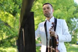 музыкант на свадьбу