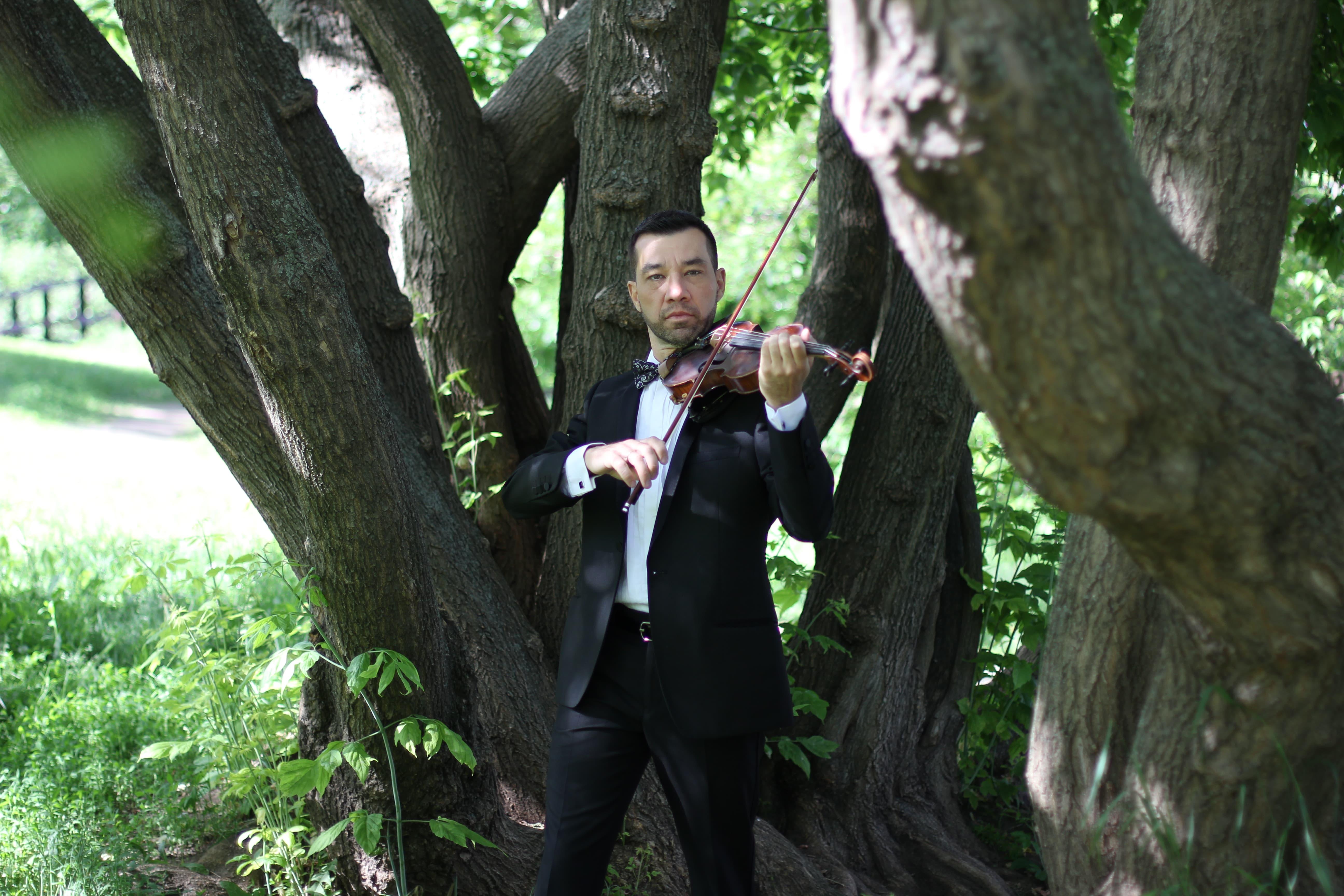 Скрипач на свадьбу