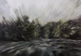 FLYBY FOREST ACROSS BORDERS