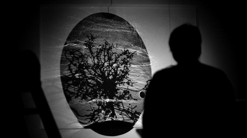 Ronel de Jager_Artist_Citizen of Glass I
