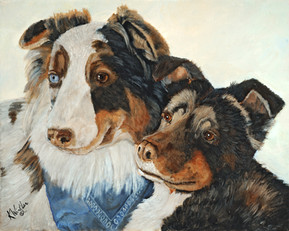 Cash and Cami - Australian Shepherd