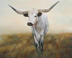 """Knight in White Satin 2"" Texas Longhorn"