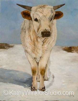 """""""Easy to Love"""" Texas Longhorn Calf Giclée"""