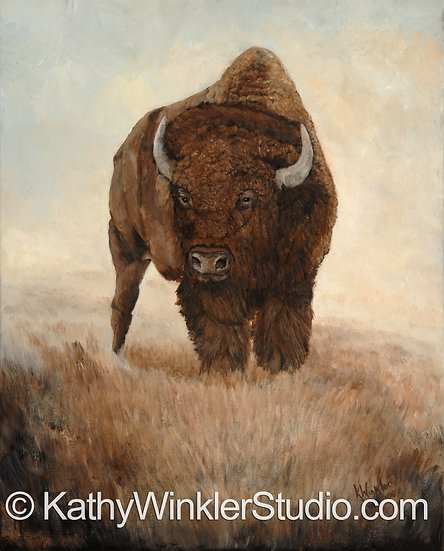 """""""I Am the One"""" Young Bison Bull Giclée"""