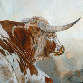 I LOVED this Young Longhorn Bull !!!!!