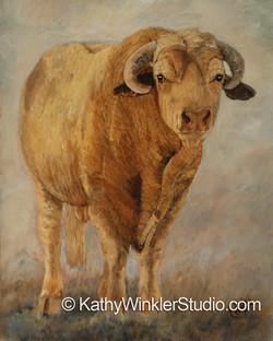 """""""Tuff Enuff 1"""" Brahman Mix Bull"""