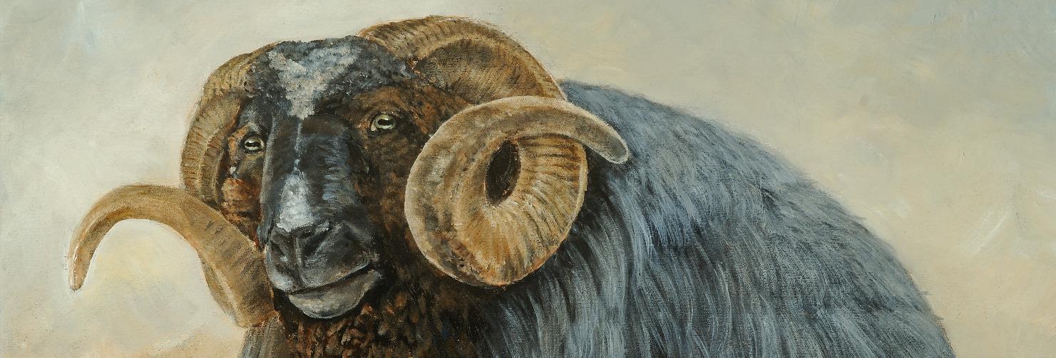 Baa Baa Black Sheep 18x24 matted_edited