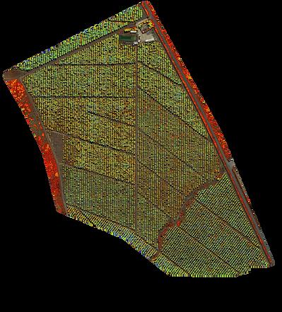 Agricultura de Precisión con drones. Índices NDVI, NDRE, Clorofila