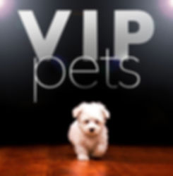 VIP Pets DogGrooming Hitchin