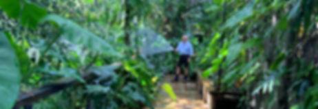 Gardens - Wix.jpg