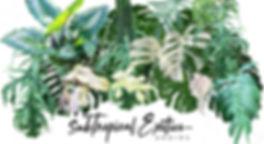 Sub Tropical Logo 2020 Master Modified L