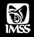 LOGO_IMSS.png