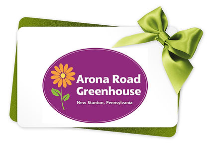 Gift Card with Ribbon.jpg