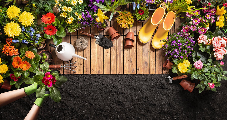 Gardening Tools on Soil Background. Spri