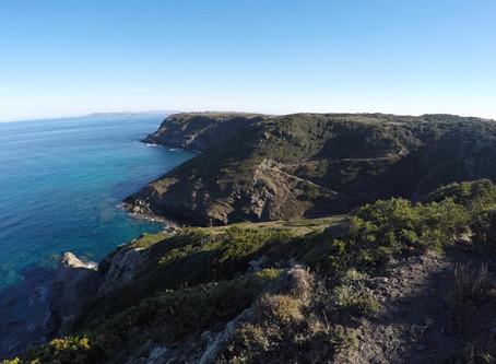 "Sardinia: the ""Sentiero Costiero della Nurra"" is a beautiful path along the coast"