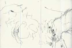 CARNET CHINOIS  (7)