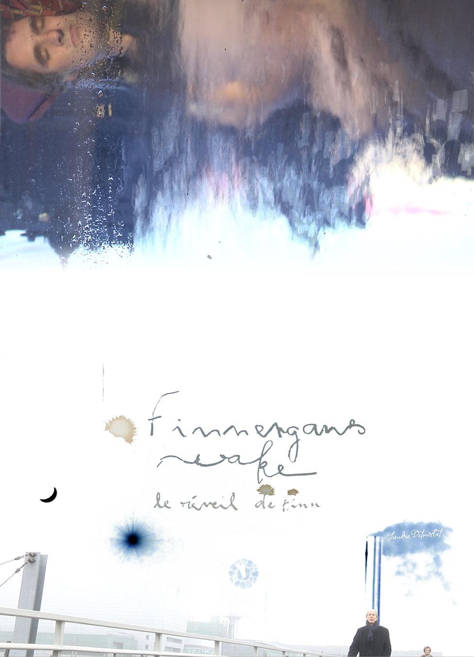 Finnengan's wake AFFICHE.jpg