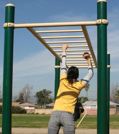 horizontal-ladder.jpg