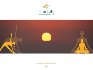 Morning Yoga at The Lily