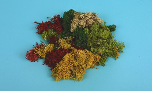 GM166 Assorted Lichen (80g)