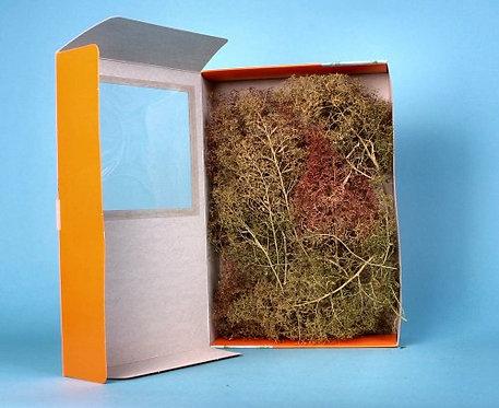 GM195 Seafoam Tree Making Set