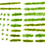 Thumbnail: GM136 Spring Grass Tufts (36)