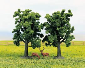 GM188 Beech Trees (2)
