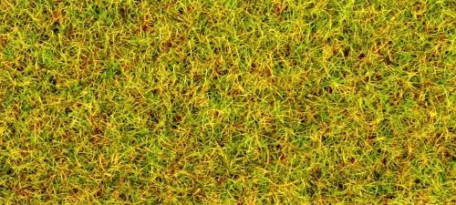 GM171 Summer Grass Static Flock (30g)