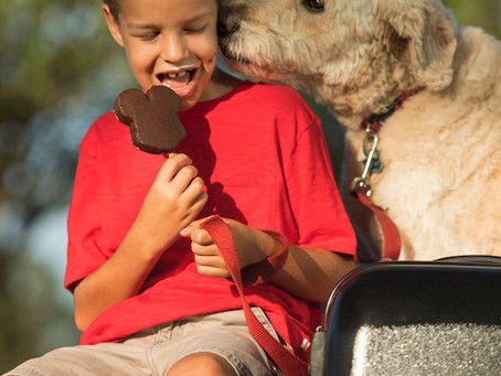 DOGS WELCOME AT SELECT WALT DISNEY WORLD HOTELS STARTING OCTOBER 15, 2017