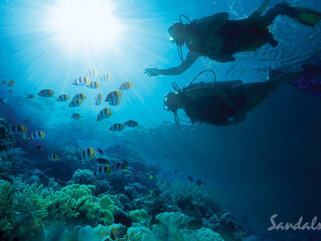 Free PADI® Discover Diving Experience for 2 at Sandals Resorts