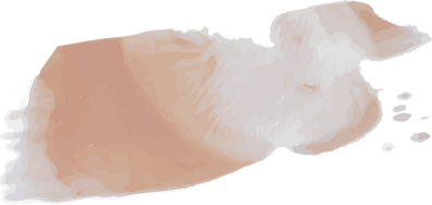 beige brush.png