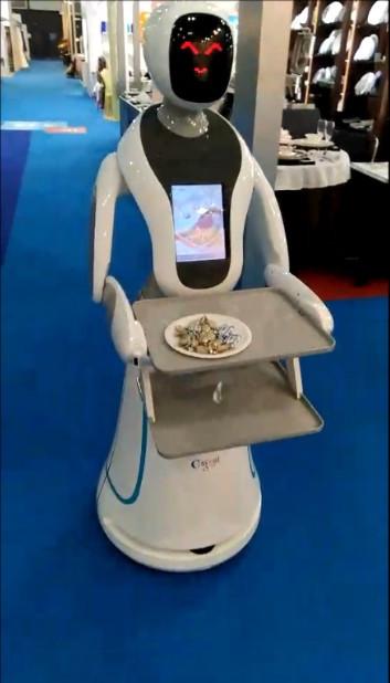 Amy the humanoid robot | Robotics blog | MieRobot.com